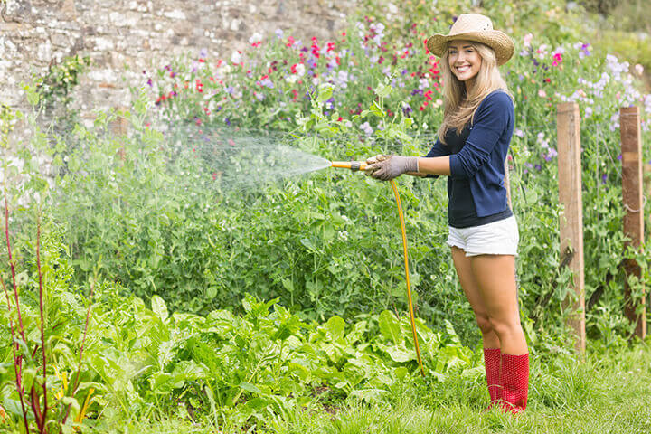 Young lady watering a large garden in summer.