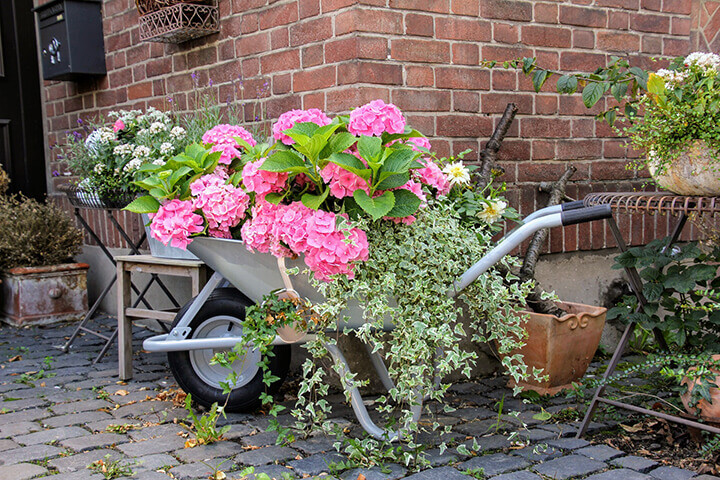 diy yard wheelbarrow flower bed