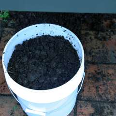 bucket of compost