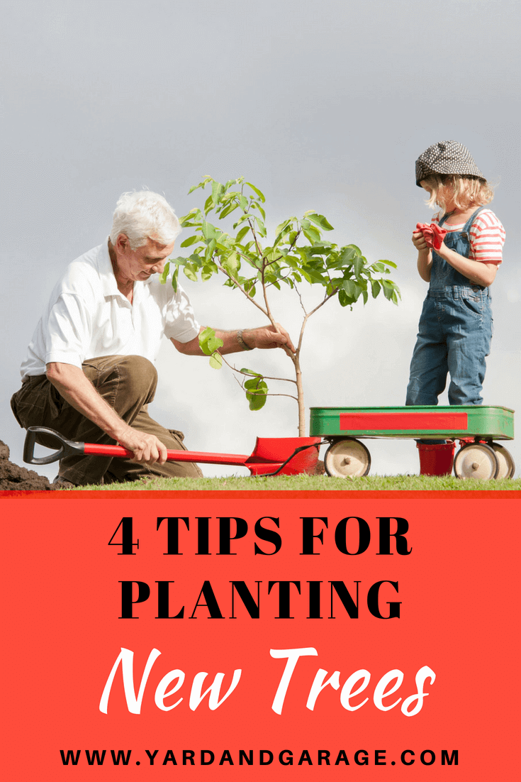 Tips for planting new trees.