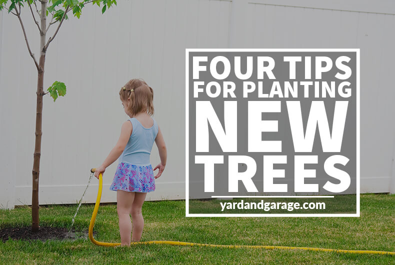 new tree planting tips