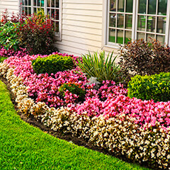 flower beds in front of home