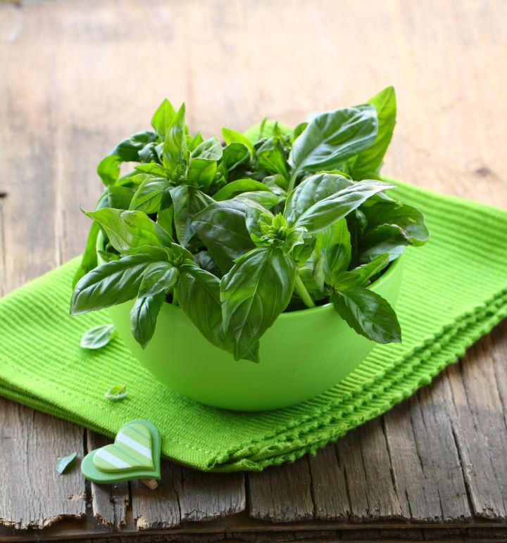 Basil in bowl on table