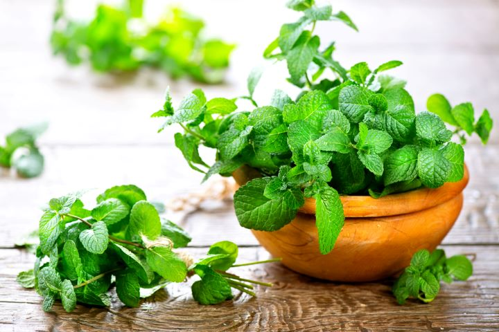 Mint leaves in bowl on table