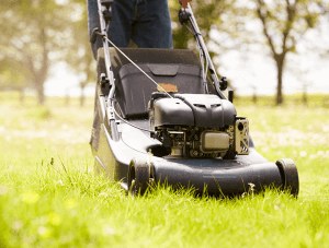 lawn mower cutting thick grass