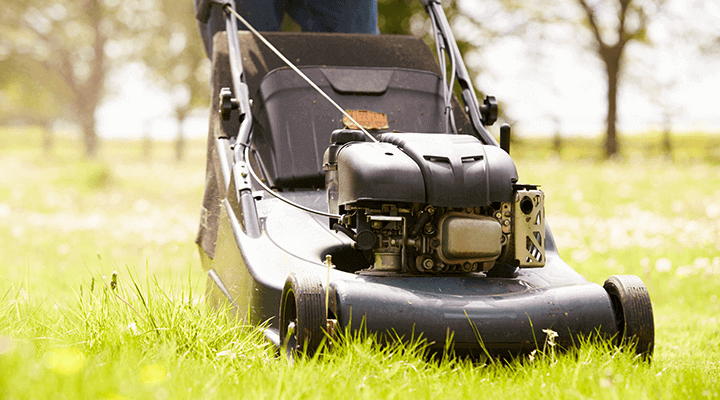 lawnmower cutting thick grass