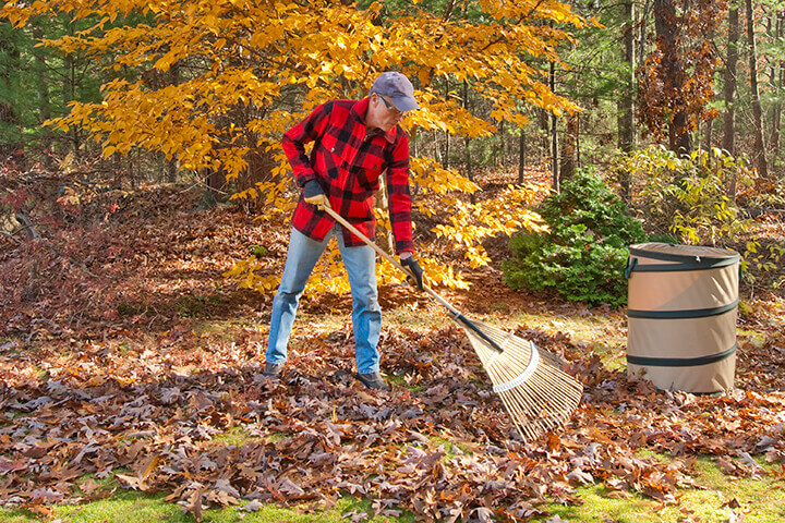 Fall Yard and Landscaping Clean Up Guide and Checklist