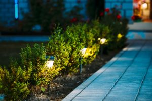 Pathway with solar lights at night