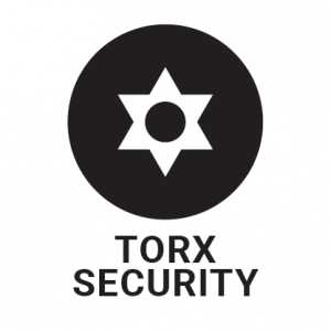 Torx security screw head profile