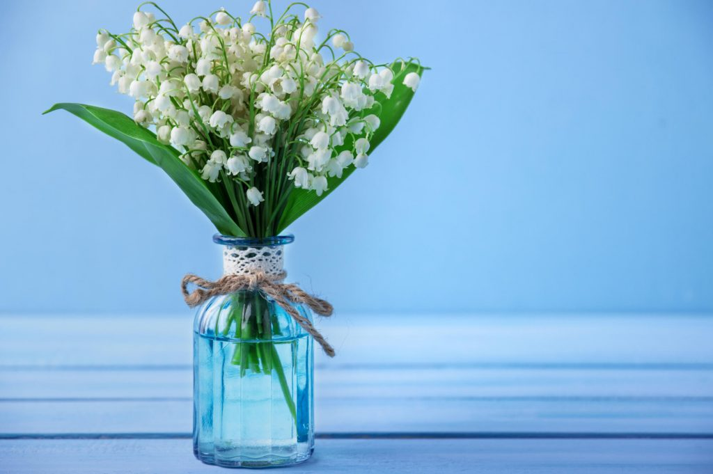 white lily-of-the-valley in a vase