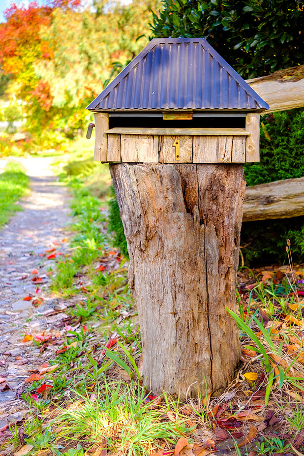 tree stump with a mailbox on top